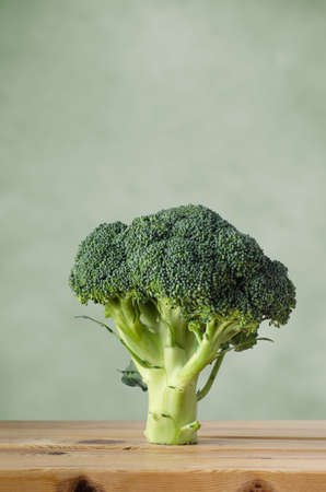 A whole head of raw broccoli on a wood plank table, standing upright on stem against a green background with copy space above.
