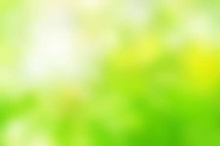 Photo pour Soft  background blur from photograph of natural foliage.  Dappled and blended bright Spring greens with yellows and white sunlight. - image libre de droit