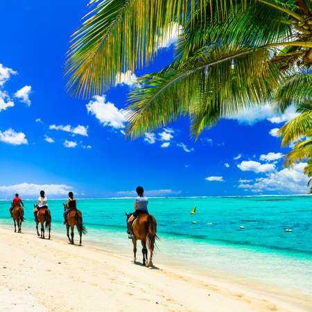 Photo for Panoramic view of beautiful beach, azure sea palm tree and horses, Mauritius island. - Royalty Free Image