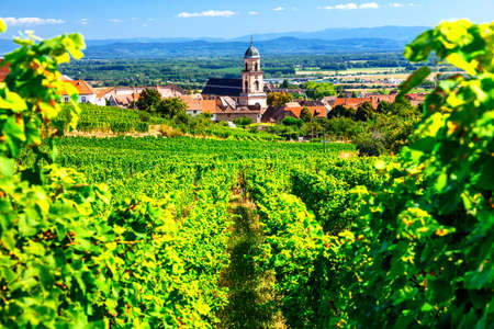 Photo for Picturesque Kayserberg village, Alsace region, view with vineyards, France. - Royalty Free Image