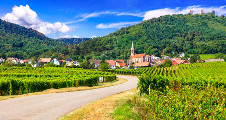 Foto de Traditional houses and vineyards in Kaysersberg village, Alsace, France - Imagen libre de derechos