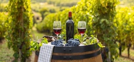 Foto de Pouring red wine into the glass, Barrel outdoor in Bordeaux Vineyard, France - Imagen libre de derechos