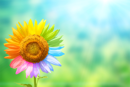 Foto de Concept - to be yourself, to be unique.  Sunflower with petals painted in rainbow colors on blurred background of green and blue colors - Imagen libre de derechos