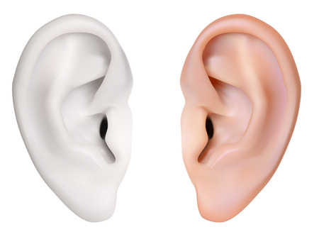 Ilustración de Photo-realistic vector. Human Ear. Isolated on white - Imagen libre de derechos