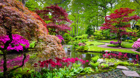 Photo for Traditional Japanese Garden in The Hague. - Royalty Free Image