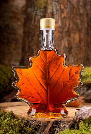 Photo for A bottle of delicious maple syrup in hardwood forest setting. - Royalty Free Image