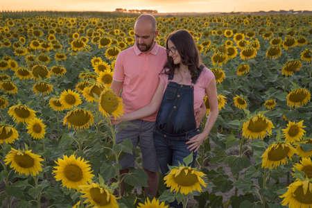 Foto de Cheerful Caucasian couple on maternity shoot in a sunflower field during sunset - Imagen libre de derechos