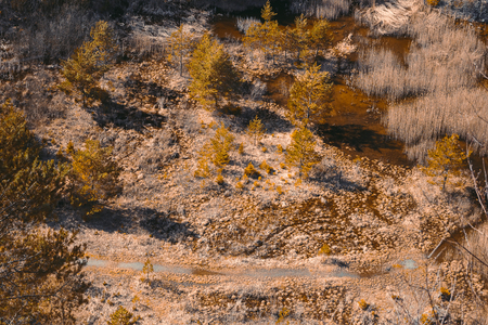Photo for Aerial view to swamped quarry with high dry grass, trees and pond, Czech republic, teal orange colored - Royalty Free Image