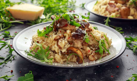 Photo for Italian Mushroom risotto with parmesan cheese and wild rocket on top. - Royalty Free Image