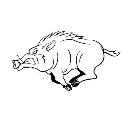 Illustration pour Wild Boar - image libre de droit