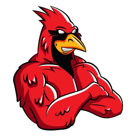 Photo pour Cardinal Bird Mascot - image libre de droit