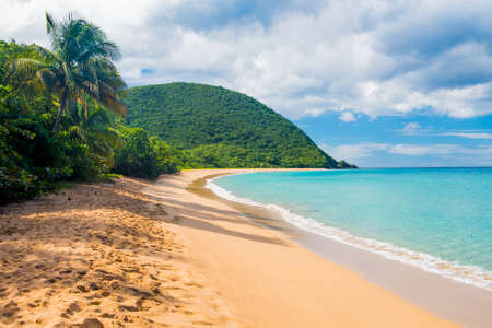 Photo for Great beach of Grand Anse near village of Deshaies, Guadeloupe, Caribbean - Royalty Free Image