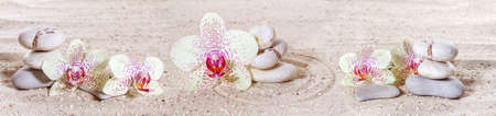 Foto de Panorama with orchids and zen stones in the sand  - Imagen libre de derechos