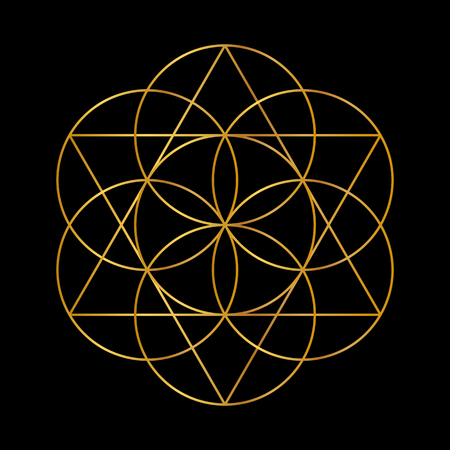 Ilustración de Flower of Life. Golden Vector Sacred Geometry isolated on black. - Imagen libre de derechos