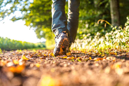 Photo for Closeup of male legs hiking in nature. - Royalty Free Image
