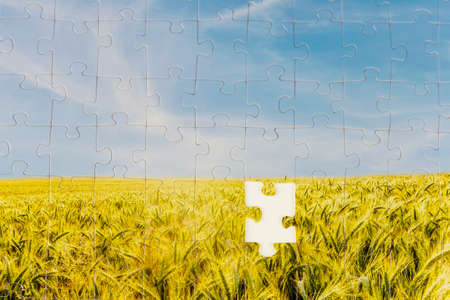 Photo pour One last piece required to complete the puzzle in a landscape jigsaw depicting a sunlit field or ripening golden wheat with one piece missing in the centre in a conceptual image. - image libre de droit