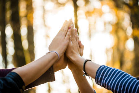Photo for Closeup view of four people joining their hands together high up in the air outside in a forested area. - Royalty Free Image