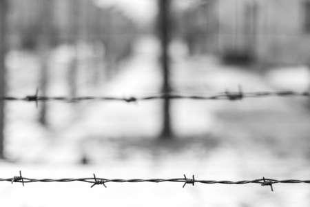 Foto de barred wire in Auschwitz concentration camp in black and white. blurred background - Imagen libre de derechos