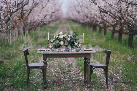 Photo pour Decorated ceremonial table in the victorian style in apricot garden. A wedding in spring garden. The effect of film photography - image libre de droit
