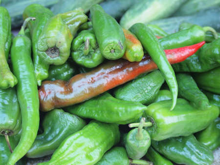 Green and red chili in the market