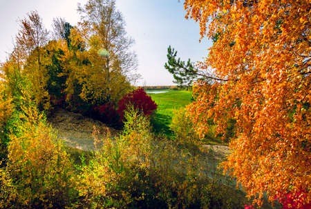 Trees with green red and yellow foliage close up against the background of a lake