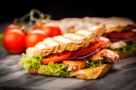 Photo for Grilled chicken sandwich with yellow cheese and vegetables - Royalty Free Image
