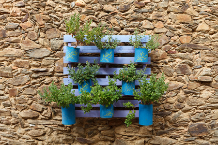 Photo for Beautifuful flowerpot recycling on a stone wall - Royalty Free Image