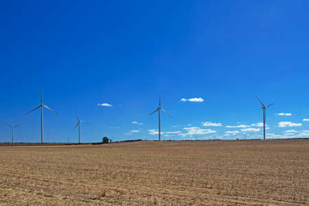 Photo for Landscape of wind turbines in dry field after harvest and blue cloudy sky near Hopefield, South Africa - Royalty Free Image