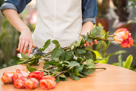Photo for Close-up. Young female florist cutting a roses at flower shop. - Royalty Free Image