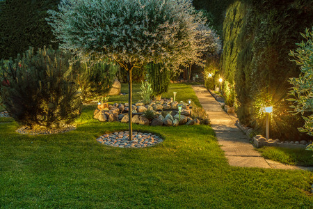Photo pour Lights in nice garden - image libre de droit
