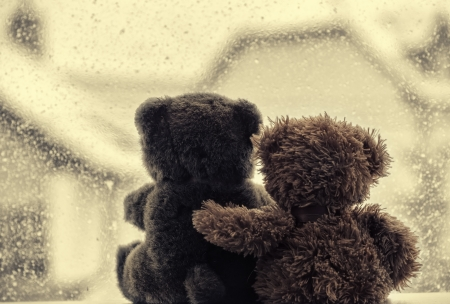 Photo for Bears in love - Royalty Free Image