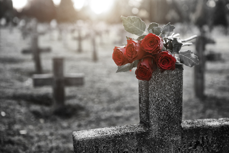 Photo for There are plenty of tombstones in the cemetery - Royalty Free Image