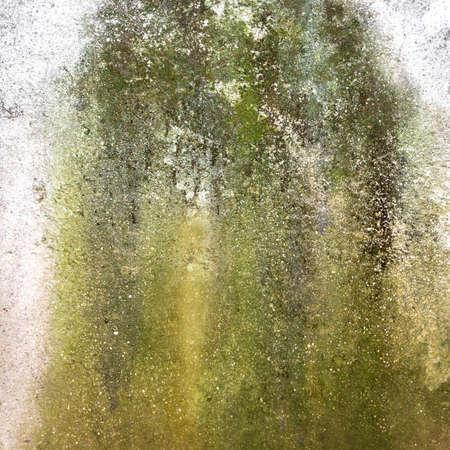Foto de Wall with green mold and dirt on the surface - Imagen libre de derechos