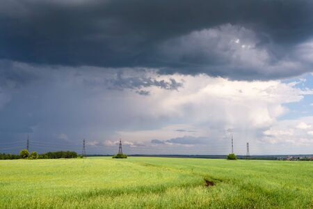 Dramatic Scene: Coming Heavy Thunderstorm over Meadow at Summer Day