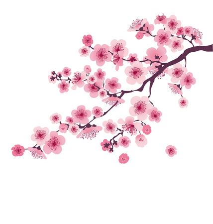 Ilustración de pastel color cherry blossom. vector illustration.  japan sakura branch with blooming flowers - Imagen libre de derechos