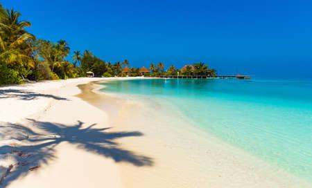 Photo pour View of the paradise sandy beach, Maldives. Copy space for text - image libre de droit