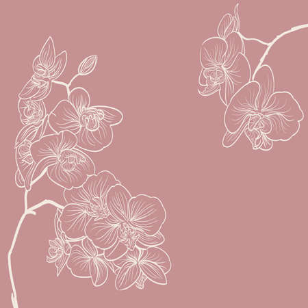 Ilustración de orchid flowers illustration as frame background - Imagen libre de derechos