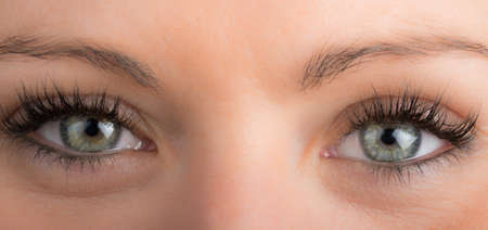 Photo for detail of eyes of the girl with long eyelashes - Royalty Free Image