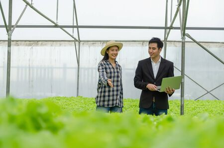 Photo for young asian farmer woman and business man talking and checking fresh green oak lettuce salad, organic hydroponic vegetable with laptop in greenhouse garden nursery farm, agriculture business concept - Royalty Free Image