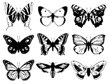 Illustration pour Set of butterflies silhouette with open wings. - image libre de droit