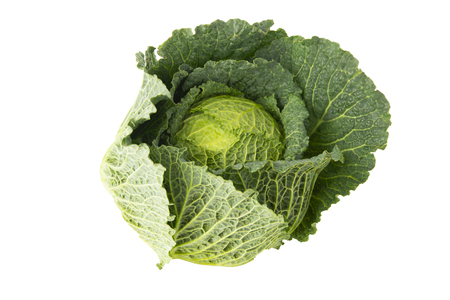 Photo pour Organic food. Green savoy cabbages isolated on white background fresh green head. - image libre de droit