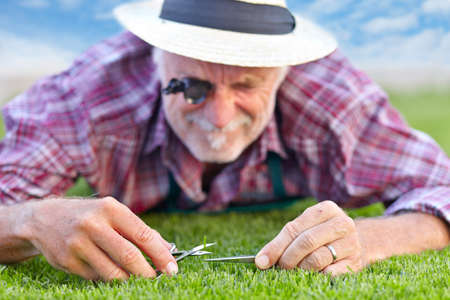 Foto de Close up of senior gardener cutting grass - Imagen libre de derechos