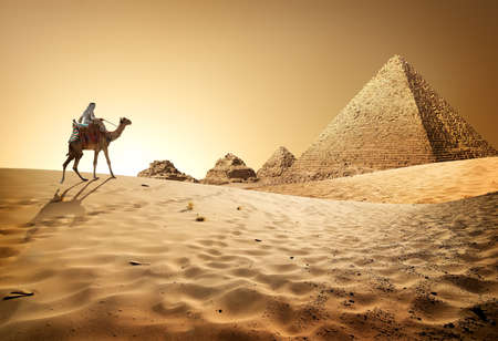 Photo pour Bedouin on camel near pyramids in desert - image libre de droit