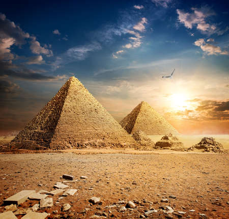 Photo for Big bird over pyramids at the sunset - Royalty Free Image