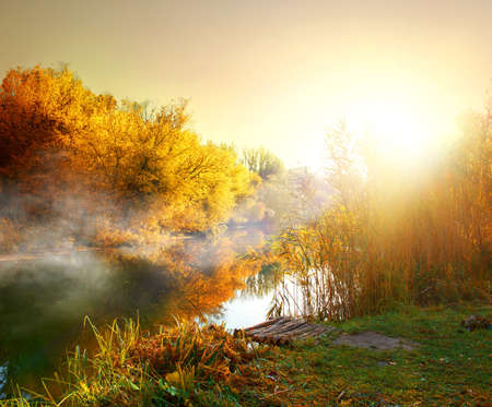 Photo pour Fog over river in forest in the autumn - image libre de droit
