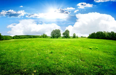 Foto de Green lawn and trees under beautiful clouds - Imagen libre de derechos