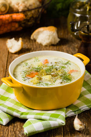 Photo pour Traditional cucumber soup with pickled cucumbers. Front view. - image libre de droit