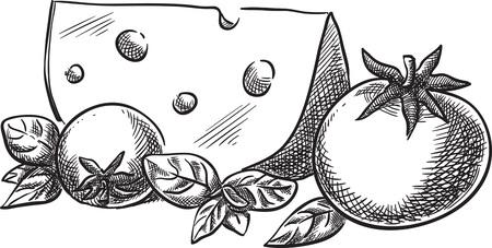 Illustrazione per Creative conceptual vector. Sketch hand drawn cheese and tomato illustration, engraving, ink, line art, vector. - Immagini Royalty Free