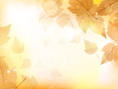 Autumn design background with leaves falling from the tree  EPS10