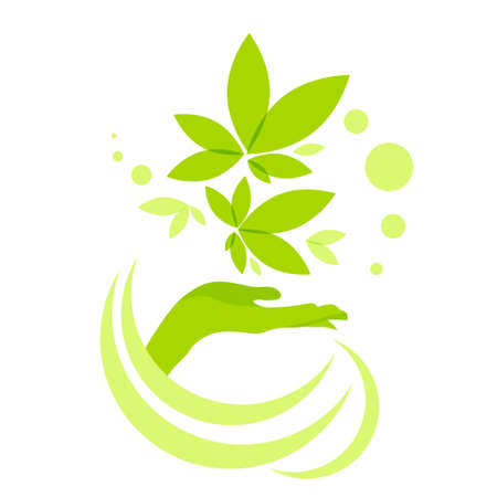 Illustration pour Hand Hold Green Leaves Logo Icon Isolated on White Background Vector Illustration - image libre de droit